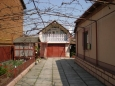 for rent house  Beregovo