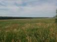 продам земельну ділянку, Сидинівка