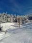 land, Bukovets �������