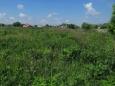 land, Sukhovolya ����� �����������