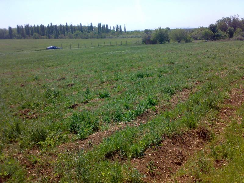 for sale land  Sevastopol