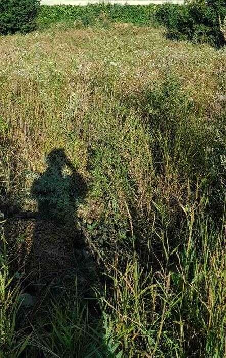 продам земельну ділянку в Теребовлі