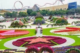 The biggest natural flower garden in Dubai